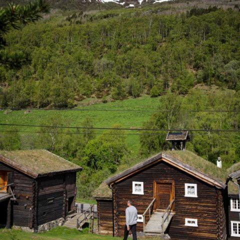 Natur-roisheim